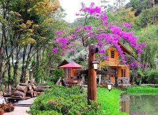 Ma rừng lữ quán sở hữu không gian thiên nhiên tuyệt mỹ
